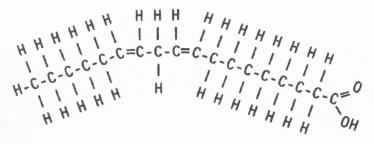 Importance Of Polysaccharides together with Difference Between Methane And Vs Propane moreover Chapter2a furthermore 815292998764986369 moreover 7534838. on chemical diagram